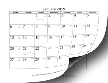 2019 Calendar with day-of-year and days-remaining-in-year